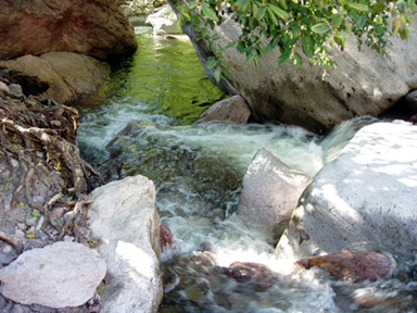 Whitewater Canyon rapids